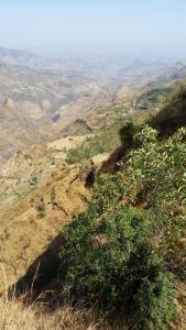 Ethiopia-ToAksum-14