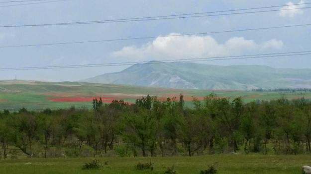 Kyrgy021159