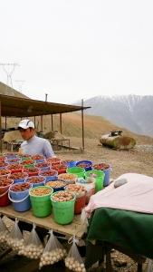 Tajik024508