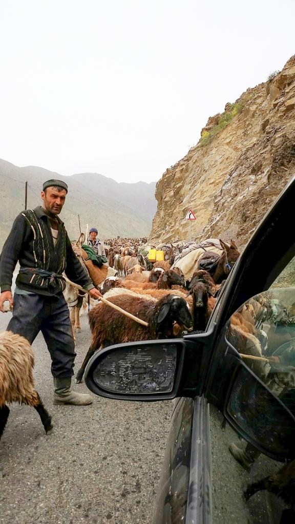 Tajik025139